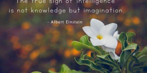 Albert Einstein's Quote about Imagination 5