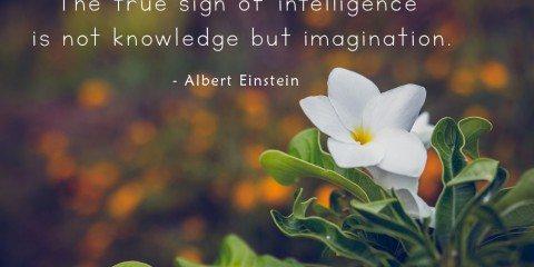 Albert Einstein's Quote about Imagination 9