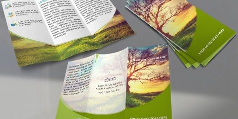 Brochure Design Template ID - 3586 4