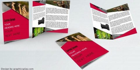 Brochure Design Template ID - 3481 8